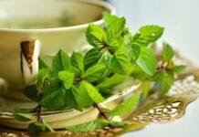 czy zielona herbata odchudza